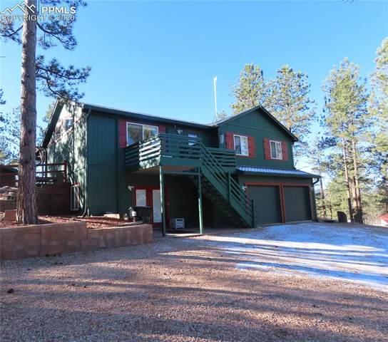 517 Crystal Peak Road, Florissant, CO 80816 (#6314180) :: Finch & Gable Real Estate Co.