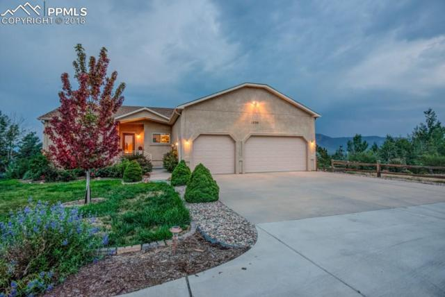 1230 Bowstring Road, Monument, CO 80132 (#6314501) :: Action Team Realty