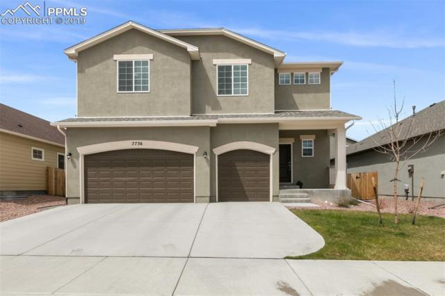 7736 Wagonwood Place, Colorado Springs, CO 80908 (#6315888) :: CC Signature Group