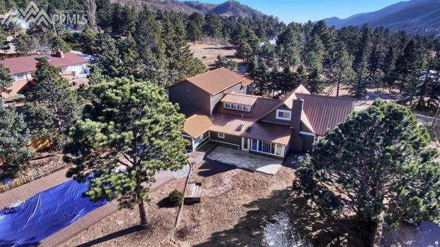 7850 Gardiner Road, Cascade, CO 80809 (#6322072) :: The Peak Properties Group