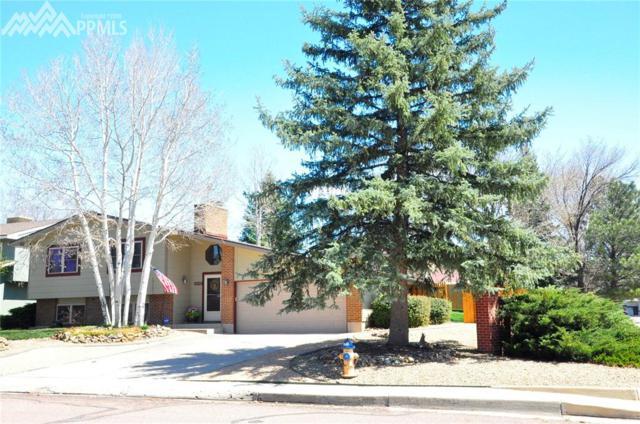 2015 Crystal River Drive, Colorado Springs, CO 80915 (#6330614) :: The Treasure Davis Team