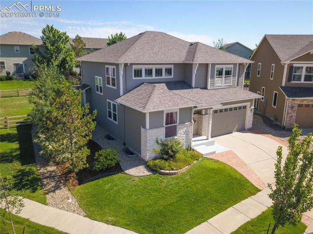 8371 James Creek Drive, Colorado Springs, CO 80924 (#6335827) :: CC Signature Group
