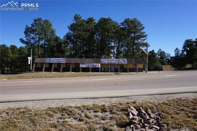11605 Black Forest Road, Colorado Springs, CO 80908 (#6342193) :: Harling Real Estate