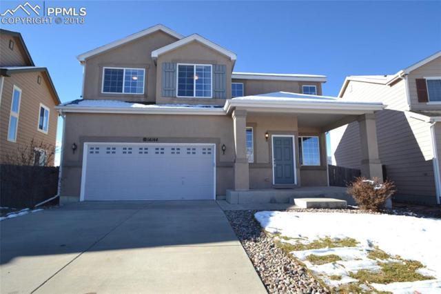 14144 White Peak Drive, Colorado Springs, CO 80921 (#6370101) :: Harling Real Estate