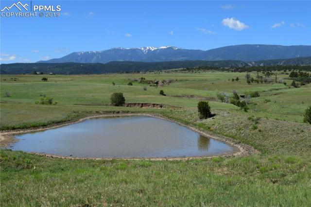 Simonson Road, Beulah, CO 81023 (#6377100) :: Action Team Realty