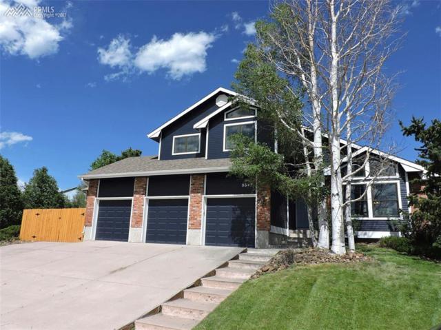 8645 Chapel Square Court, Colorado Springs, CO 80920 (#6384233) :: RE/MAX Advantage