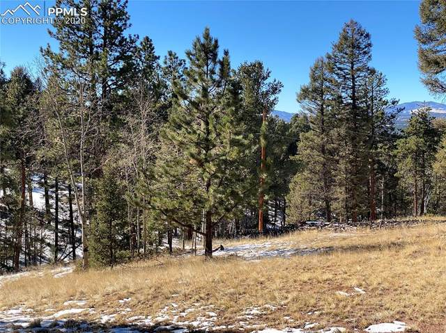 144 Insmont Lane, Florissant, CO 80816 (#6410735) :: 8z Real Estate