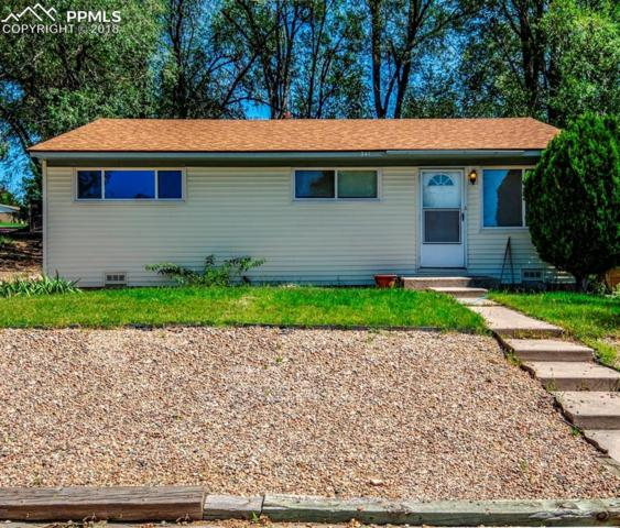 341 Davie Drive, Colorado Springs, CO 80911 (#6411318) :: The Dunfee Group - powered by eXp Realty