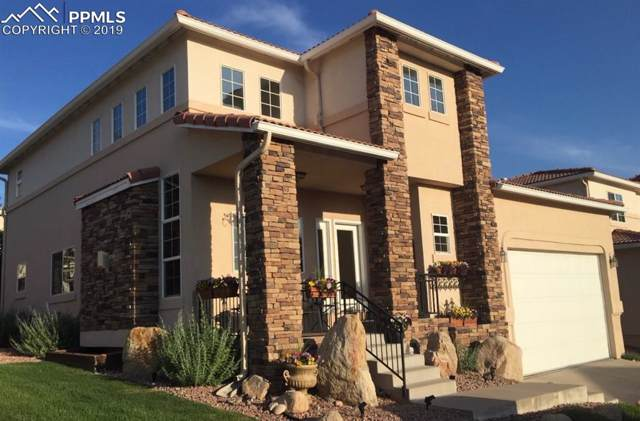 4020 San Felice Point, Colorado Springs, CO 80906 (#6418758) :: Tommy Daly Home Team