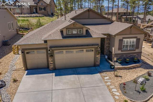 1765 Catnap Lane, Monument, CO 80132 (#6425880) :: The Treasure Davis Team
