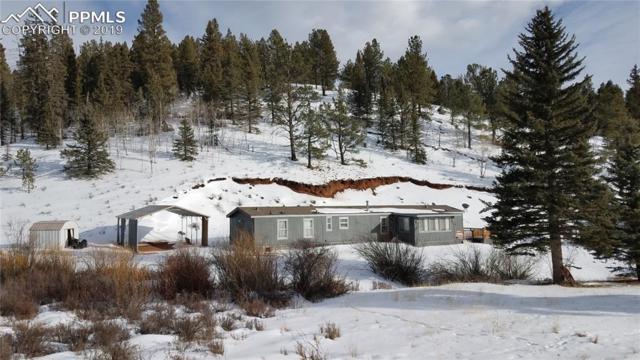 1770 Pathfinder Road, Florissant, CO 80816 (#6430782) :: 8z Real Estate