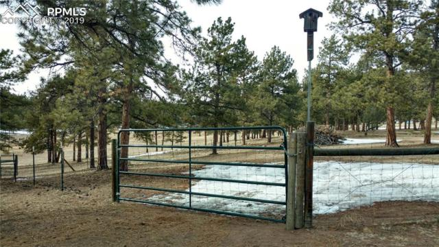 431-485 High Chateau Road, Florissant, CO 80816 (#6435286) :: The Peak Properties Group