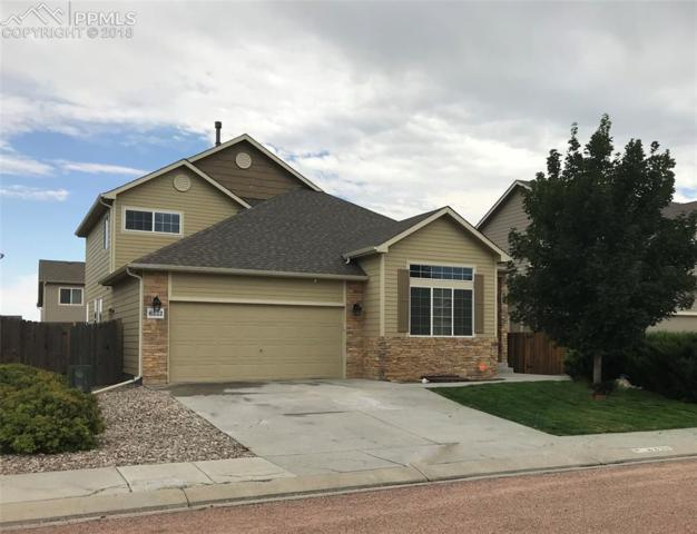6333 Roundup Butte Street, Colorado Springs, CO 80925 (#6476550) :: Harling Real Estate