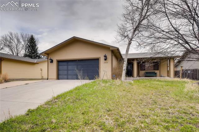 4305 Mallow Road, Colorado Springs, CO 80907 (#6479408) :: Venterra Real Estate LLC
