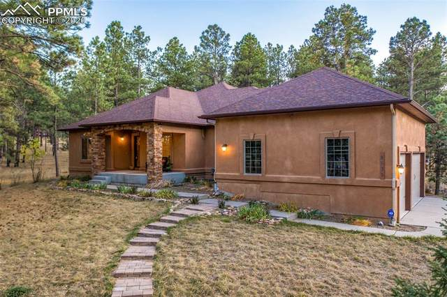 8635 Ponderosa Springs Point, Colorado Springs, CO 80908 (#6481385) :: Action Team Realty