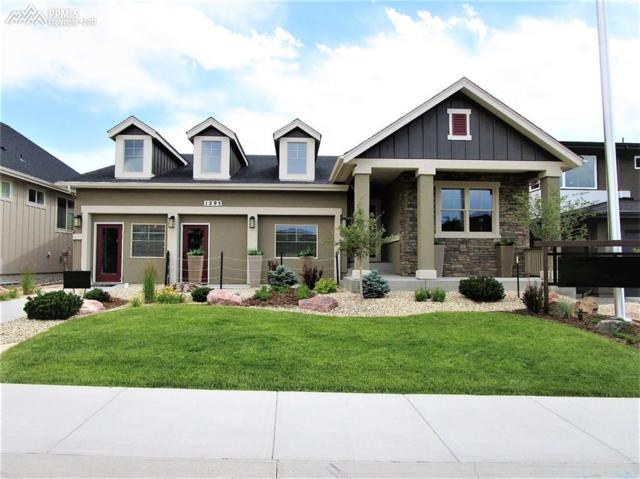 1293 Foothills Farm Way, Colorado Springs, CO 80921 (#6483353) :: 8z Real Estate