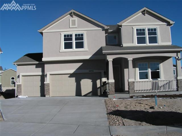 6836 Oak Vine Court, Colorado Springs, CO 80908 (#6492282) :: Action Team Realty