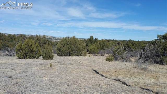 W Pine Bluff Drive, Rye, CO 81004 (#6503304) :: 8z Real Estate
