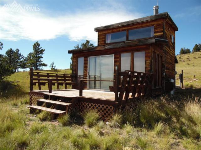 475 Antelope Lane, Guffey, CO 80820 (#6518892) :: 8z Real Estate
