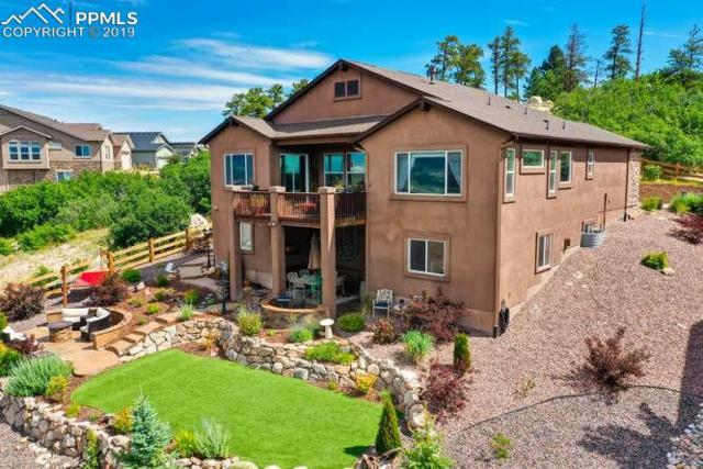 258 Kettle Valley Way, Monument, CO 80132 (#6528336) :: Tommy Daly Home Team