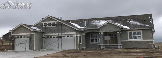 12694 Black Hills Drive, Peyton, CO 80831 (#6536380) :: Tommy Daly Home Team