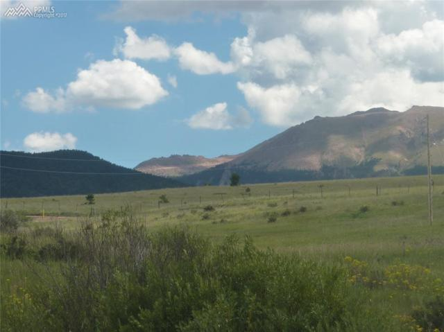 Elfin Glen Drive, Divide, CO 80814 (#6552522) :: 8z Real Estate