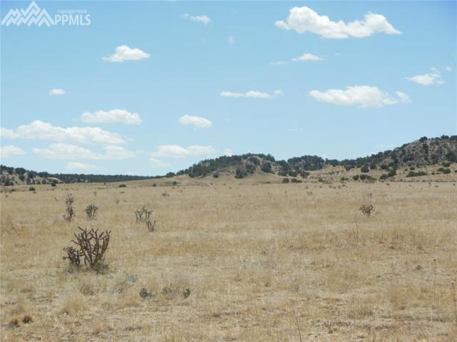 Lot 30 Katherine Lane, Pueblo, CO 81004 (#6553735) :: Harling Real Estate