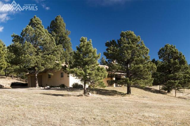 13340 S Perry Park Road, Larkspur, CO 80118 (#6556639) :: 8z Real Estate