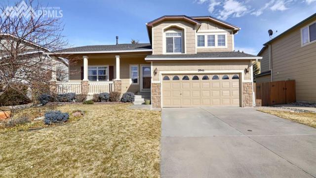 2945 Mule Shoe Drive, Colorado Springs, CO 80922 (#6578727) :: 8z Real Estate
