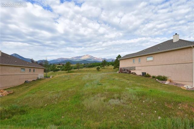 4045 Ramshorn Point, Colorado Springs, CO 80904 (#6584216) :: 8z Real Estate