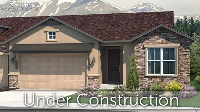 1692 Lazy Cat Lane, Monument, CO 80132 (#6616363) :: Tommy Daly Home Team