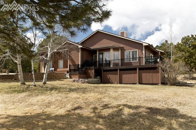 19725 Indian Summer Lane, Monument, CO 80132 (#6619011) :: Action Team Realty
