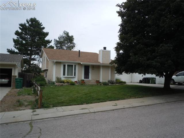 3128 Banjo Drive, Colorado Springs, CO 80918 (#6630465) :: 8z Real Estate