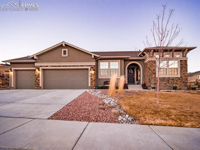 3270 Waterfront Drive, Monument, CO 80132 (#6664237) :: Action Team Realty