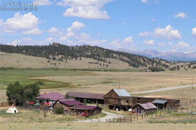 12165 County 77 Road, Jefferson, CO 80456 (#6669781) :: Harling Real Estate