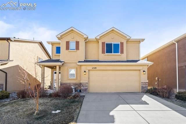 11529 Hibiscus Lane, Colorado Springs, CO 80921 (#6670098) :: 8z Real Estate