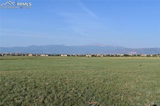 7782 Lochwinnoch Lane, Colorado Springs, CO 80908 (#6673452) :: Action Team Realty