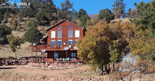 295 Cheyenne Road, Florissant, CO 80816 (#6676041) :: Colorado Home Finder Realty