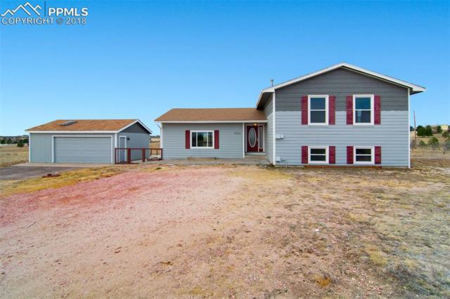 10930 Squawbush Loop, Peyton, CO 80831 (#6694361) :: The Treasure Davis Team