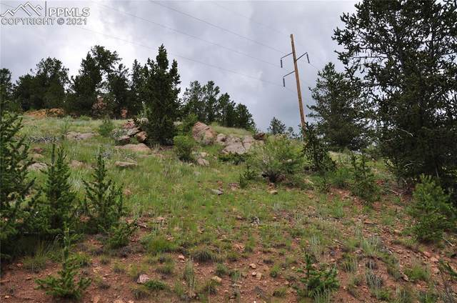 n/a Lewis Avenue, Victor, CO 80860 (#6697942) :: Action Team Realty