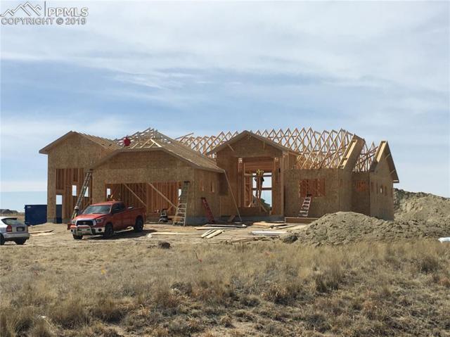 13865 Irish Hunter Trail, Elbert, CO 80106 (#6701980) :: Perfect Properties powered by HomeTrackR
