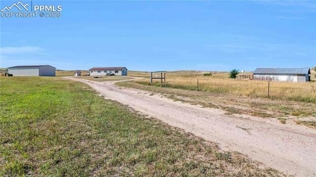 29675 Paint Mine Road, Calhan, CO 80808 (#6717137) :: Perfect Properties powered by HomeTrackR
