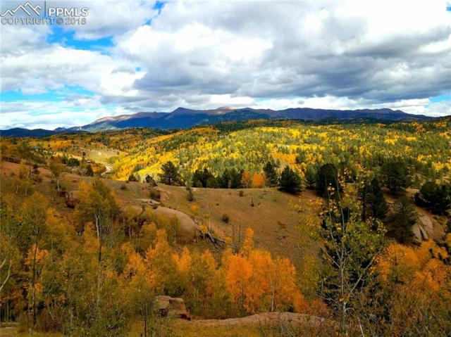 468 Golden Cycle Circle, Cripple Creek, CO 80813 (#6720124) :: Harling Real Estate