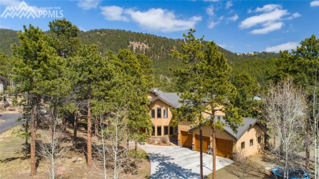 1035 Skyline Court, Woodland Park, CO 80863 (#6733424) :: CC Signature Group