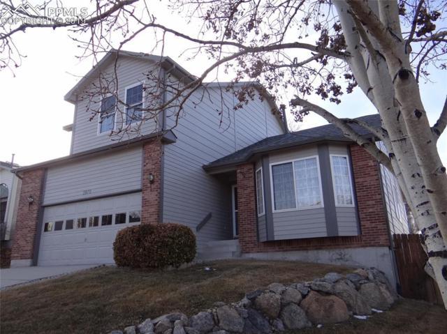 2870 Warrenton Way, Colorado Springs, CO 80922 (#6738611) :: The Hunstiger Team