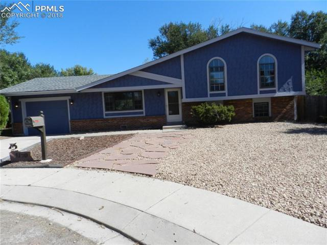 4170 Hybrid Place, Colorado Springs, CO 80917 (#6768356) :: Jason Daniels & Associates at RE/MAX Millennium