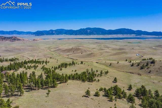 Lot 12 Eagles Nest Lane, Hartsel, CO 80449 (#6790880) :: The Daniels Team