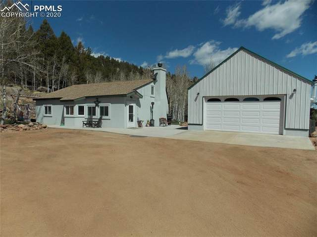 460 Spruce Drive, Florissant, CO 80816 (#6791437) :: Tommy Daly Home Team