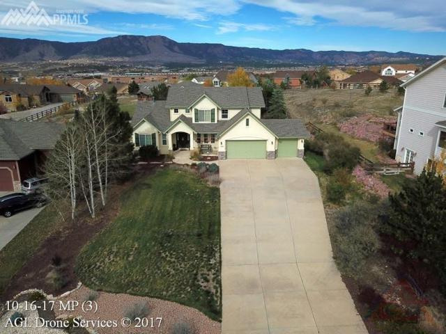 490 Saber Creek Drive, Monument, CO 80132 (#6792573) :: 8z Real Estate