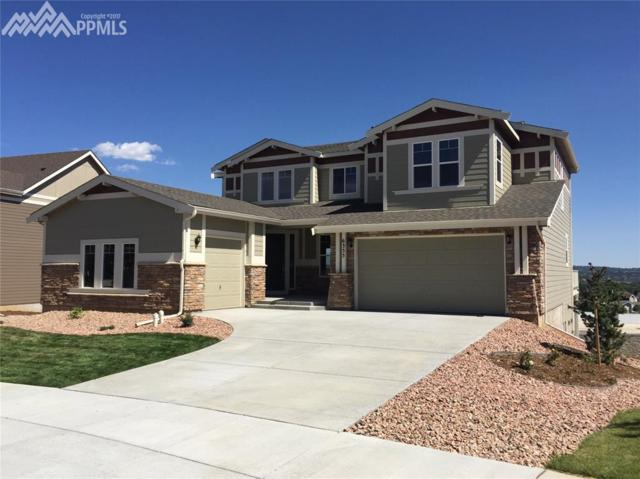 6355 Fall Haven Court, Colorado Springs, CO 80919 (#6803758) :: 8z Real Estate